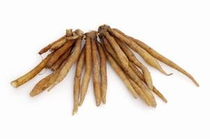 Tumicuni (Galingale/Krachai)